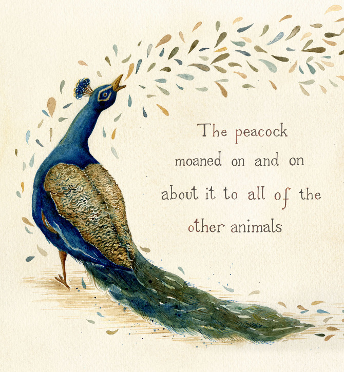 quotes about love and peacocks quotesgram